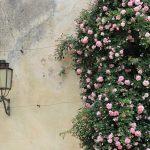 Gdzie zastosować lampę typu kinkiet?